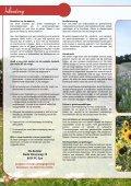 Download PDF (15.938,42 Kb) - De Bolster - Page 6