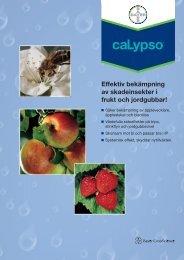 Effektiv bekämpning av skadeinsekter i frukt och jordgubbar!