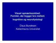 bundesen-den-visuelle-hjerne.pdf