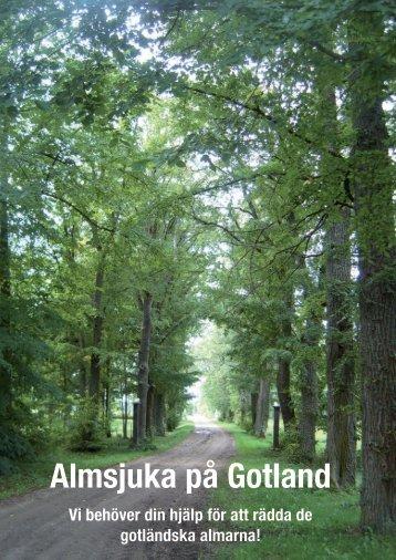 Folder om almsjukan (pdf) - Skogsstyrelsen