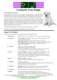 Caring for Your Puppy. PDF - Ingleburn Veterinary Hospital