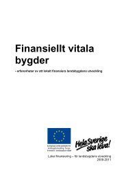 Finansiellt vitala bygder - Hela Sverige ska leva
