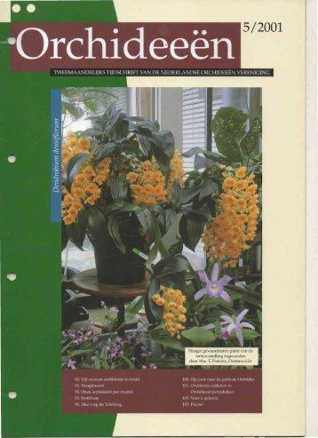 2001 - 5 - Orchideeën Vereniging Vlaanderen
