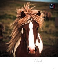 download hier western catalogus - Get - equiproducts