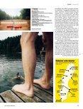 2008 - Fokus - Page 4