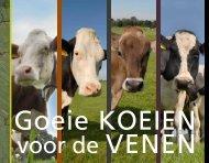 Goeie koeien voor de Venen - Clm