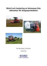 Skörd och hantering av biomassa från våtmarker för ... - TecnoFarm