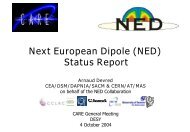 Report on NED Activities - Desy