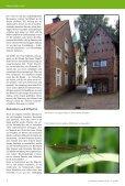 Münsterland zu Fuß - Seite 4