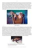 Av Leif G. Westrin - BERUS Herp Magazine - Page 7