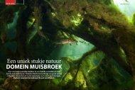 Een uniek stukje natuur DomEin muisbroEk - Filip Staes Fotografie