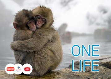Film One Life - de Bogaard