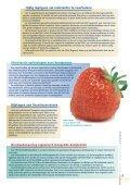 Op koers, Product Stewardship in de ... - Nefyto - Page 5