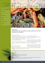 Nieuwsbrief nr 2 juni 2013.pdf - Restaurant Olijf