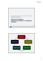 Presentation från seminariet, diabetes 148.6 KB pdf - SNS