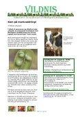 Vildnis nr 2.pdf - Økologisk Landsforening - Page 3