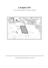 Lokalplan 1031