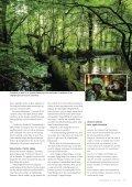 Forsvar for naturen - Page 4