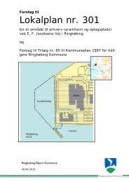 Forslag til lokalplan 301.pdf - Ringkøbing-Skjern Kommune