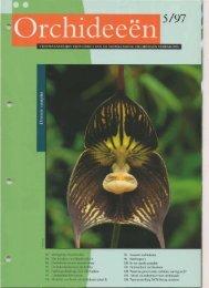 1997 - 5 - Orchideeën Vereniging Vlaanderen