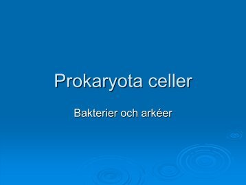 Prokaryota celler - Nvb10