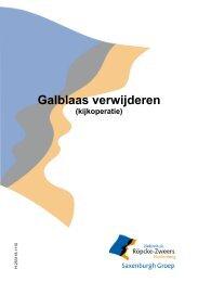 Galblaas verwijderen kijkoperatie