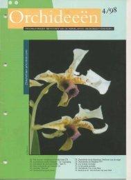 1998 - 4 - Orchideeën Vereniging Vlaanderen