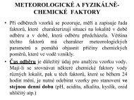 pdf 2,60 MB