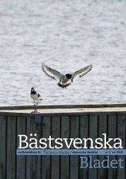 Bästsvenska bladet 2010 nr 1.pdf - Fältbiologerna
