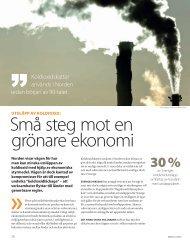 Små steg mot en grönare ekonomi (pdf)