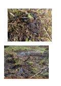 Länsstyrelsen - Ta ert ansvar som tillsynsmyndighet! - Fältbiologerna - Page 4