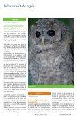2009 - Werkgroep Kerkuilen - Page 5