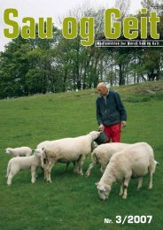 Nr. 3/2007 - Norsk Sau og Geit