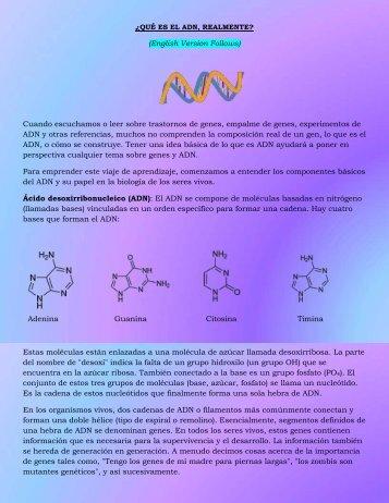 ¿Qué es el ADN, Realmente?
