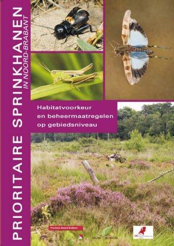 Schut, D., M., Reemer, R., Krekels & R., Kleukers, 2009 ... - Naturalis
