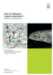 Plan for fiskepleje i Gudenå, delområde 3 - Bjerringbro & omegns ...