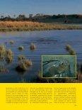 Zomerse zeelten (2) - Jens Bursell - Page 2