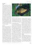Zomerse zeelten (2) - Jens Bursell - Page 4