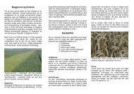 Baggrund og historie Sædskiftet - Økologisk Rådgivning