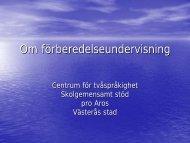 Introduktionsgrupp - Västerås stad
