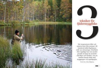 Läs artikeln - Johan Klingberg