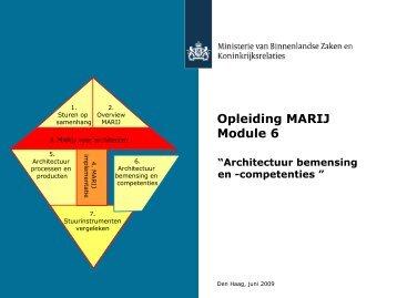 Architectuurbemensing en -competenties - E-overheid