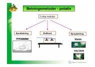 Betningsmetoder - potatis - Bayer CropScience