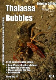 Thalassa Bubbles - Duikteam Thalassa