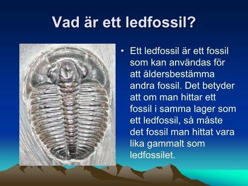 kol datering av fossil