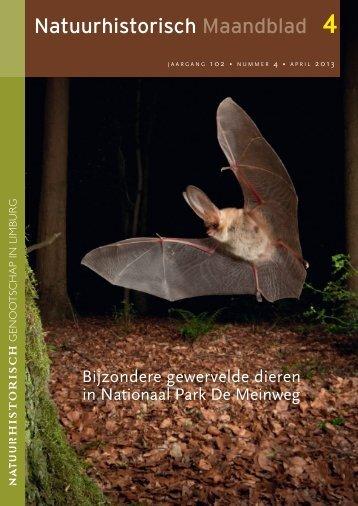 Natuurhistorisch Maandblad - Bionet Natuuronderzoek