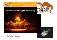 Vleermuisvriendelijke verlichting - De Zoogdiervereniging