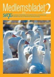 Medlemsblad 2 2012 - SFOG