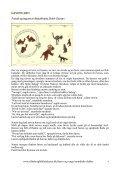 Kannibalkvinden Somaliske eventyr og fabler - Silkeborg Bibliotekerne - Page 4