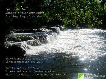 Det gode vand – Vandet i planlægningen ... - Klimatilpasning